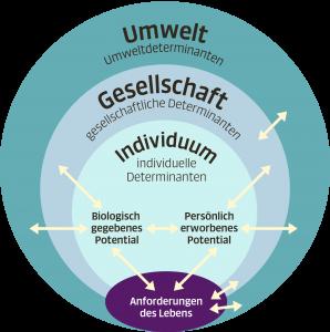 Grafische Darstellung des Meikirch-Modells